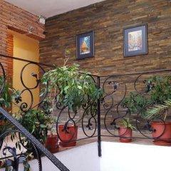 Отель Livia Албания, Тирана - отзывы, цены и фото номеров - забронировать отель Livia онлайн с домашними животными