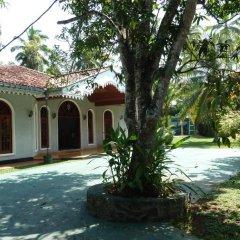 Отель Villa La Luna Шри-Ланка, Берувела - отзывы, цены и фото номеров - забронировать отель Villa La Luna онлайн фото 2