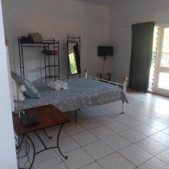 Отель Daintree Wild Zoo & Bed and Breakfast 3* Стандартный номер с различными типами кроватей фото 6