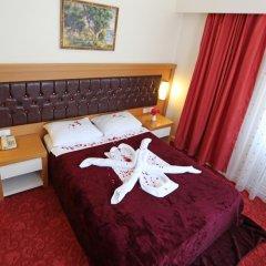Forest Park Hotel в номере