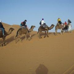 Отель Merzouga Camp Марокко, Мерзуга - отзывы, цены и фото номеров - забронировать отель Merzouga Camp онлайн пляж фото 2