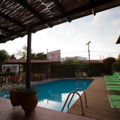 Ammon Garden Hotel бассейн
