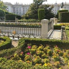 Отель Hostal Luz Испания, Мадрид - 7 отзывов об отеле, цены и фото номеров - забронировать отель Hostal Luz онлайн