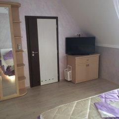 Гостиница Guesthouse Alina Стандартный номер двуспальная кровать фото 5