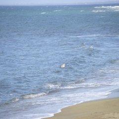 Отель Stone House Andromeda пляж фото 2
