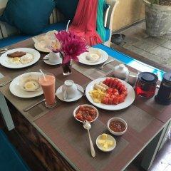 Отель Khalids Guest House Galle питание фото 2