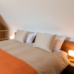 Отель De Rode Haas 3* Номер Делюкс с различными типами кроватей фото 2