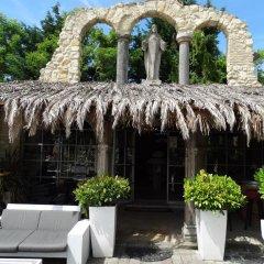 Отель Paradijs Eiland Нидерланды, Хазерсвауде-Рейндейк - отзывы, цены и фото номеров - забронировать отель Paradijs Eiland онлайн фото 8