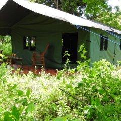 Отель Yala Peocok Camping фото 5