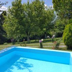 Отель Sonita бассейн фото 3