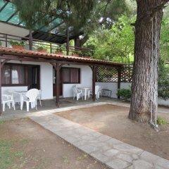 Отель Para Thin Alos Греция, Ситония - отзывы, цены и фото номеров - забронировать отель Para Thin Alos онлайн фото 7