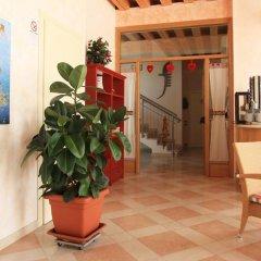 Отель Agriturismo B&B Il Girasole Италия, Мира - отзывы, цены и фото номеров - забронировать отель Agriturismo B&B Il Girasole онлайн интерьер отеля