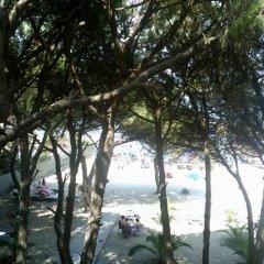 Hotel Ylberi Голем приотельная территория фото 2