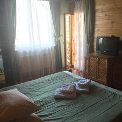 Гостиница Smerekova Khata Полулюкс разные типы кроватей фото 2