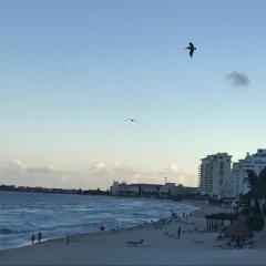 Отель Cancun Condo Rent фото 3