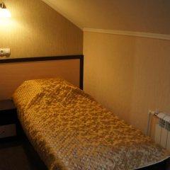 Гостиница Алива 3* Стандартный номер с различными типами кроватей фото 2