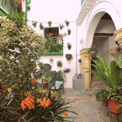 Отель Apartamentos Jerez Испания, Херес-де-ла-Фронтера - отзывы, цены и фото номеров - забронировать отель Apartamentos Jerez онлайн фото 10