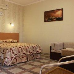 Sofiya Mini Hotel комната для гостей фото 4