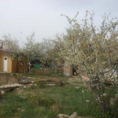 Отель B&B at Bailanysh Кыргызстан, Каракол - отзывы, цены и фото номеров - забронировать отель B&B at Bailanysh онлайн фото 2