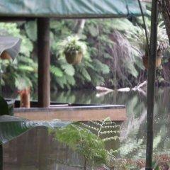Отель Colo-I-Suva Rainforest Eco Resort Вити-Леву фото 4