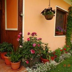 Отель Bobi Guest House Болгария, Копривштица - отзывы, цены и фото номеров - забронировать отель Bobi Guest House онлайн фото 20