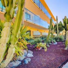 Отель SBH Club Paraíso Playa - All Inclusive 4* Стандартный номер с различными типами кроватей фото 7
