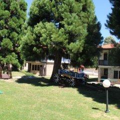 Отель Holiday Village Kedar Болгария, Долна баня - отзывы, цены и фото номеров - забронировать отель Holiday Village Kedar онлайн фото 6