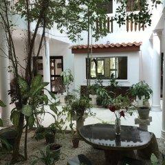 Отель Palm Beach Villa Шри-Ланка, Ваддува - отзывы, цены и фото номеров - забронировать отель Palm Beach Villa онлайн