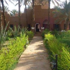 Отель Riad Tagmadart Ferme D'hôte Марокко, Загора - отзывы, цены и фото номеров - забронировать отель Riad Tagmadart Ferme D'hôte онлайн фото 11