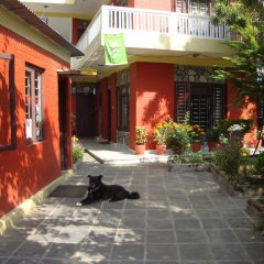 Отель New Summit Guest House Непал, Покхара - отзывы, цены и фото номеров - забронировать отель New Summit Guest House онлайн