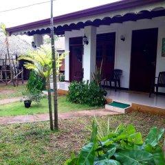 Sylvester Villa Hostel Negombo Номер категории Эконом с различными типами кроватей фото 8