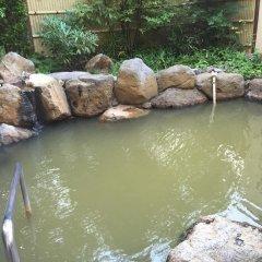 Отель Hanasansui Япония, Минамиогуни - отзывы, цены и фото номеров - забронировать отель Hanasansui онлайн бассейн