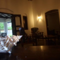 Chitra Ayurveda Hotel Стандартный номер с различными типами кроватей фото 6