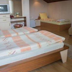 Отель VIKONI Болгария, Банско - отзывы, цены и фото номеров - забронировать отель VIKONI онлайн комната для гостей фото 4