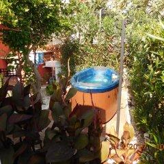 Отель Rickines Испания, Олива - отзывы, цены и фото номеров - забронировать отель Rickines онлайн бассейн