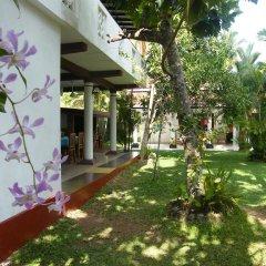 Отель White Bridge House & Resort Шри-Ланка, Берувела - отзывы, цены и фото номеров - забронировать отель White Bridge House & Resort онлайн фото 3