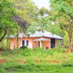 Отель Kodigahawewa Forest Resort 3* Номер Делюкс с различными типами кроватей фото 7