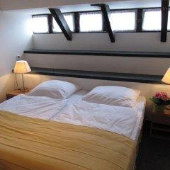 Hotel Jana / Pension Domov Mladeze Стандартный номер с различными типами кроватей фото 4