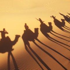 Отель Merzouga Desert Марокко, Мерзуга - отзывы, цены и фото номеров - забронировать отель Merzouga Desert онлайн фитнесс-зал фото 2
