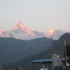 Отель Lotus Inn Непал, Покхара - отзывы, цены и фото номеров - забронировать отель Lotus Inn онлайн фото 2