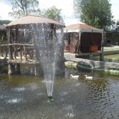 Гостиница Оазис в Лесу фото 4
