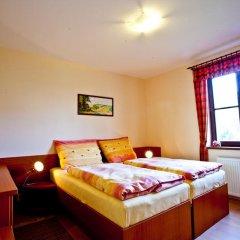 Отель ApartmÁny Vidim Кропачова-Врутице комната для гостей фото 3