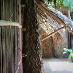 Отель Under the coconut tree Кровать в общем номере с двухъярусной кроватью