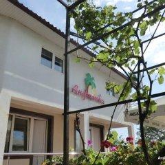 Отель Анжелика-Альбатрос Стандартный номер фото 20