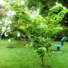 Отель Green Garden Guest House Шри-Ланка, Берувела - 1 отзыв об отеле, цены и фото номеров - забронировать отель Green Garden Guest House онлайн фото 11