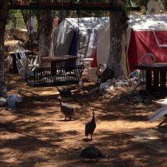 Azmakbasi Camping Турция, Атакой - отзывы, цены и фото номеров - забронировать отель Azmakbasi Camping онлайн помещение для мероприятий