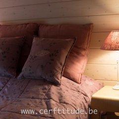 Отель Chalet Cerf'titude комната для гостей фото 3