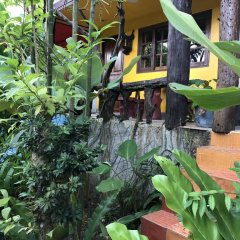 Отель Ruan Mai Sang Ngam Resort фото 15