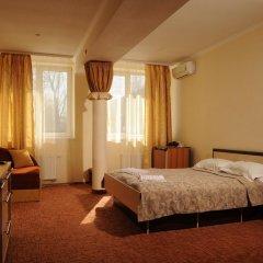 Гостиница Гостинично-оздоровительный комплекс Живая вода 4* Стандартный номер разные типы кроватей фото 6