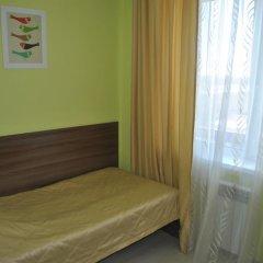 Гостиница Спутник 2* Стандартный номер разные типы кроватей фото 34
